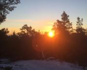 Prisma Tibro, Sweden | Prisma Eliott | Vi utför ljusberäkningar | LED gatubelysning Made in Tibro | Närvarostyrning av LED, motionsspår