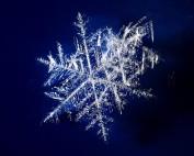 Prisma Tibro, Sweden | Prisma Eliott | Steglös inställning | LED gatubelysning | -50° C till +50° C Drifttemperatur