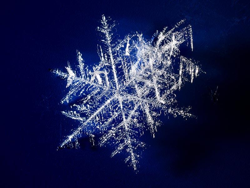 Prisma Tibro, Sweden   Prisma Eliott   Steglös inställning   LED gatubelysning   -50° C till +50° C Drifttemperatur